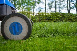 mantenimiento jardines murcia